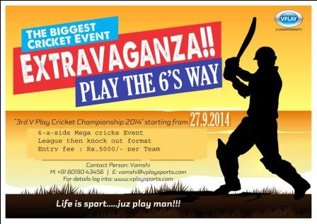 V PLAY 6'S CRICKET