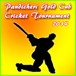 Pandicheri Gold Cub