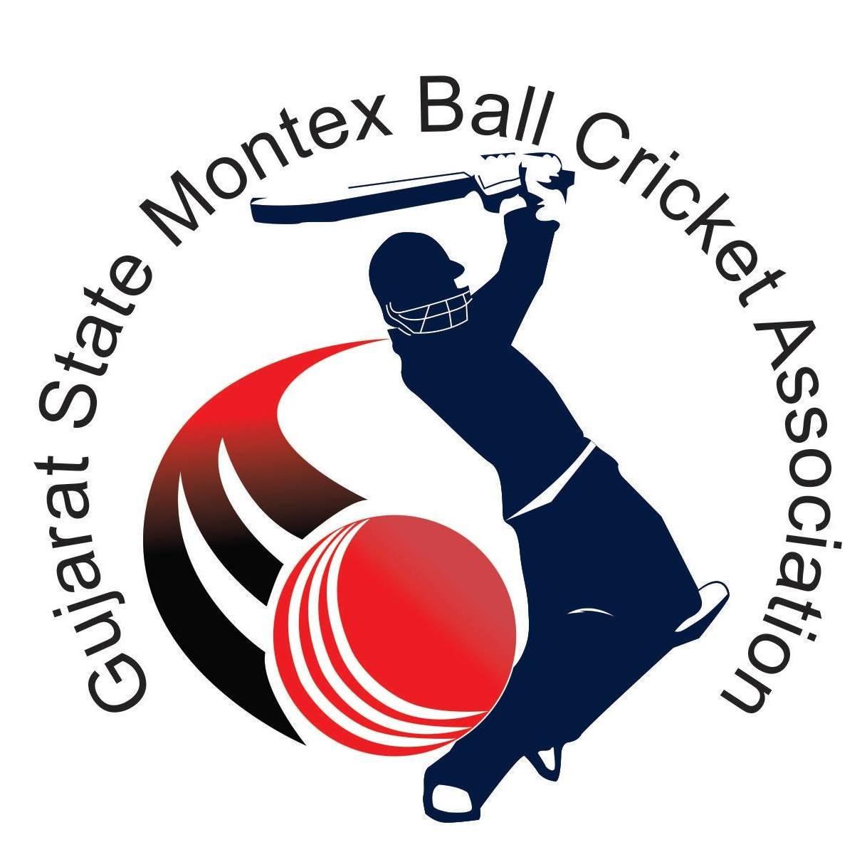 Gandhinagar Montex Ball Cricket Championship