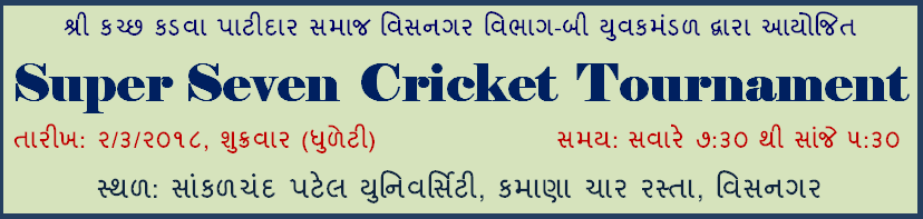 Super Seven Cricket Tournament